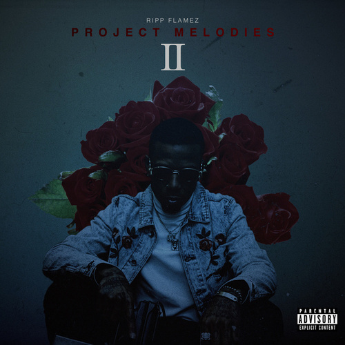 Project Melodies II de Ripp Flamez