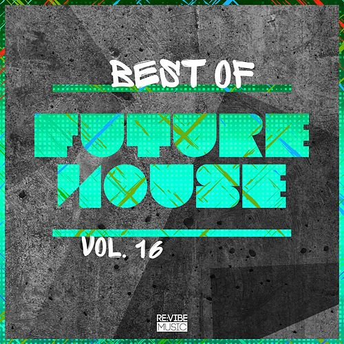 Best of Future House, Vol. 16 de Various Artists