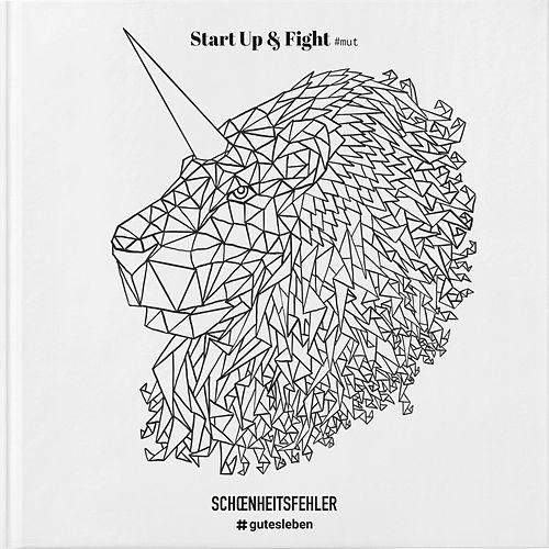 Start up & Fight by Schönheitsfehler
