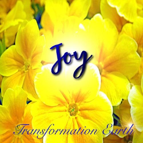 Joy de Transformation Earth