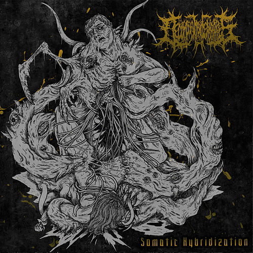 Somatic Hybridization von Decomposition of entrails