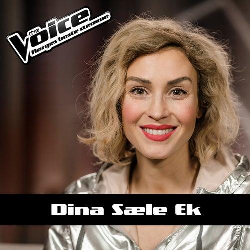 Believer von Dina Sæle Ek