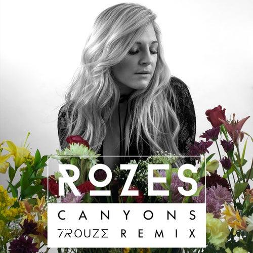 Canyons (Trouze Remix) by ROZES