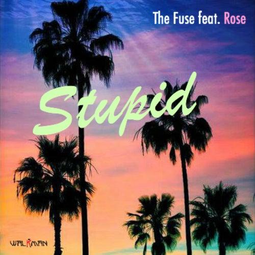 Stupid von F.U.S.E.