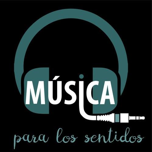 Música para los Sentidos, Vol. 2 de Música para los Sentidos