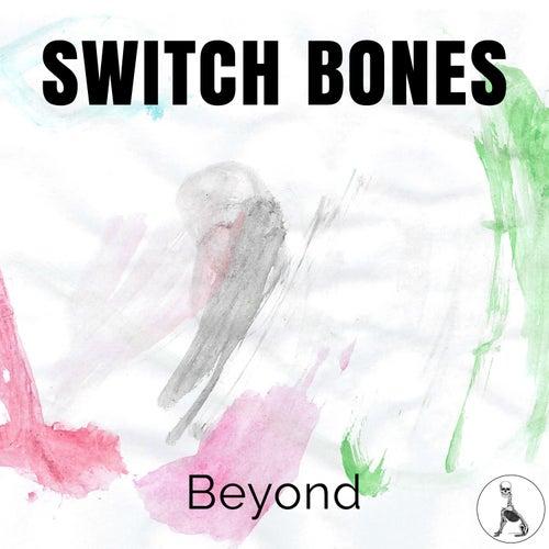 Beyond van Switch Bones