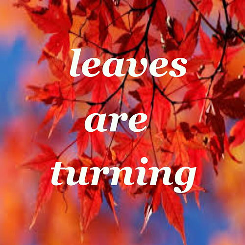 Leaves Are Turning by Various Artists