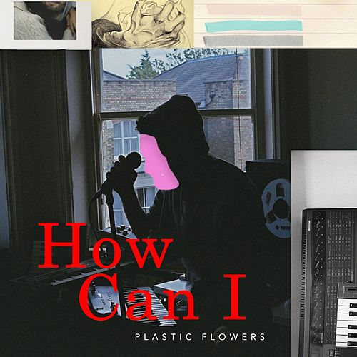 How Can I by Plastic Flowers