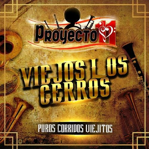 Puros Corridos Viejitos by Proyecto 11
