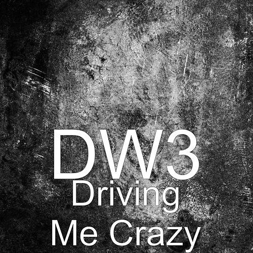 Driving Me Crazy by Dw3
