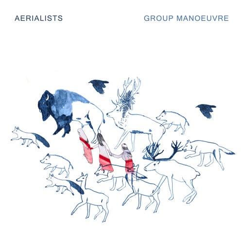 Group Manoeuvre von Aerialists