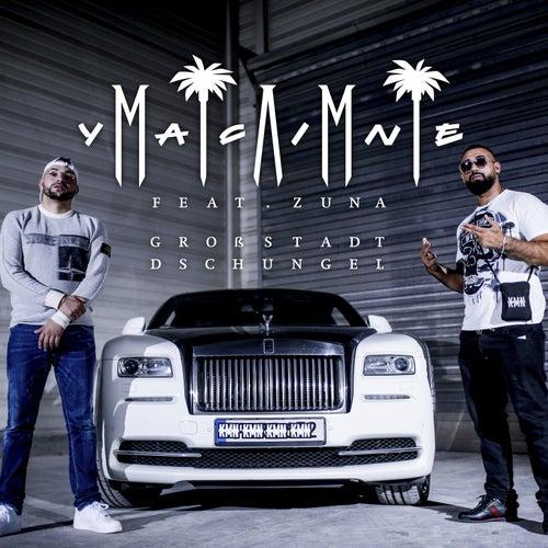 Großstadtdschungel von Miami Yacine