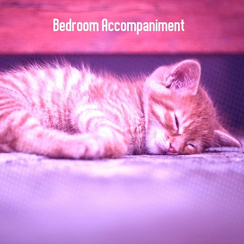 Bedroom Accompaniment von Best Relaxing SPA Music