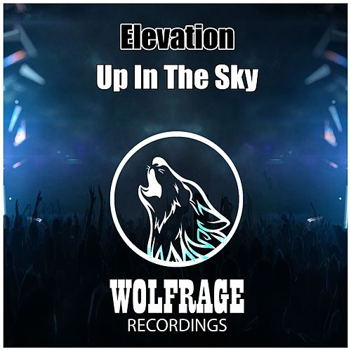 Up In The Sky von Elevation