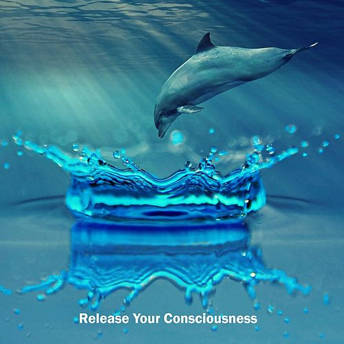 Release Your Consciousness von Best Relaxing SPA Music