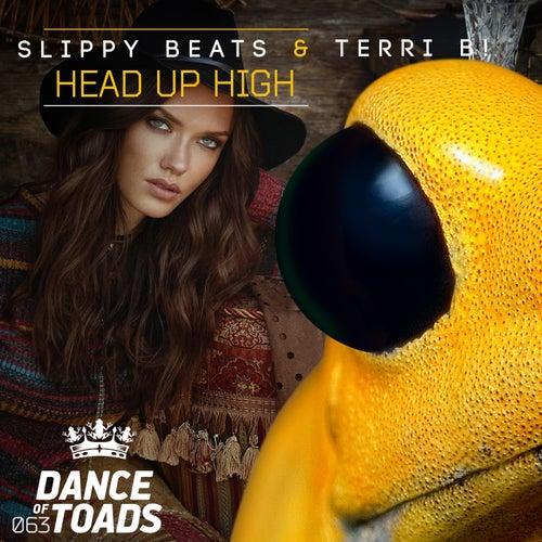 Head Up High by Slippy Beats