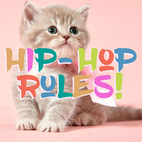 Hip Hop Rules! von Various Artists