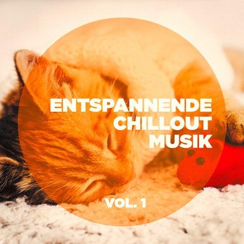 Entspannende Chillout-Musik, Vol. 1 von Various Artists