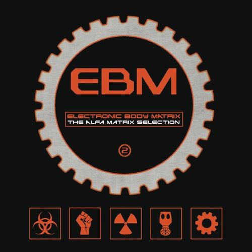 Electronic Body Matrix 2 de Various Artists