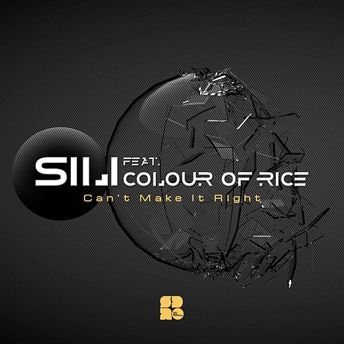 Can't Make It Right (feat. Colour of Rice) - Single by SiLi