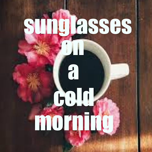 Sunglasses On A Cold Morning von Various Artists