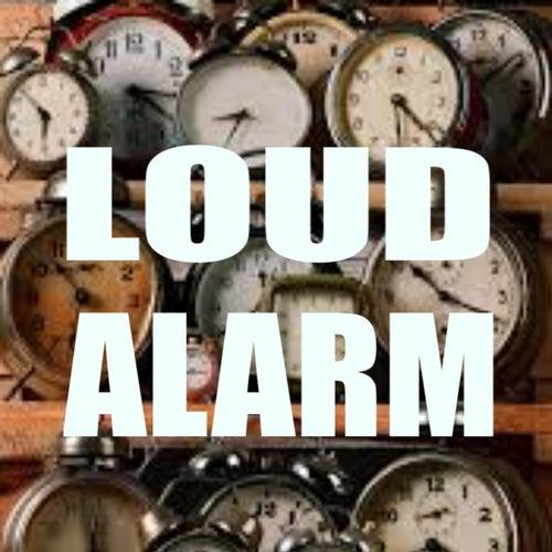Loud Alarm de Various Artists