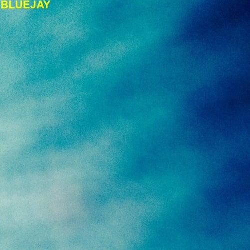 Blue Jay de Gregory Nichols