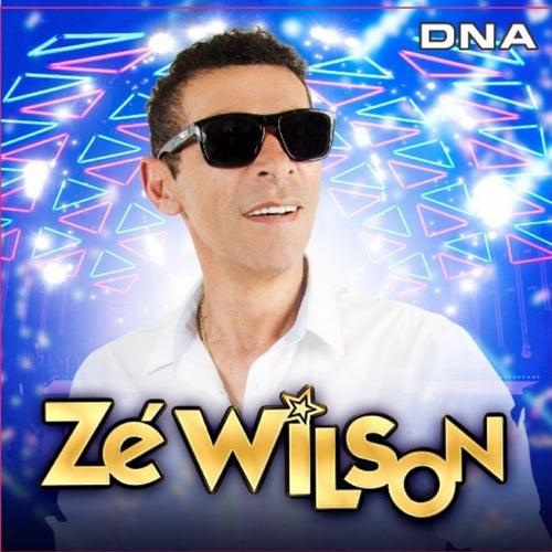 Dna de Zé Wilson