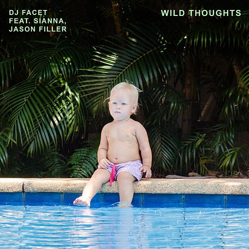 Wild Thoughts de DJ Facet