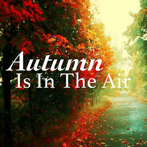 Autumn Is In The Air de Various Artists