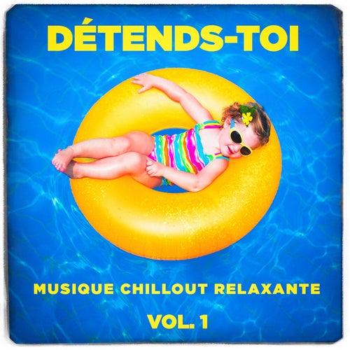 Détends-toi (Musique chillout relaxante), Vol. 1 von Various Artists
