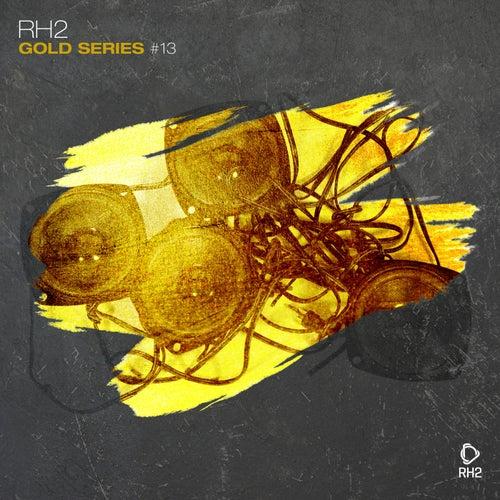 Rh2 Gold Series, Vol. 13 de Various Artists