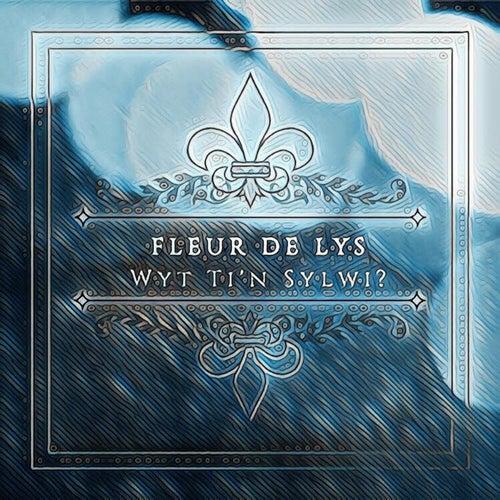 Wyt Ti'n Sylwi? by The Fleur De Lys