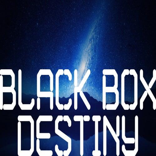 Destiny de Black Box