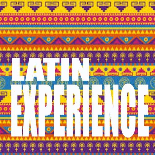 Latin Experience de Various Artists