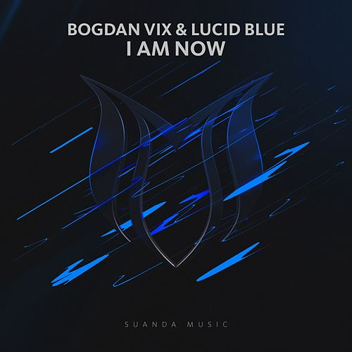 I Am Now by Bogdan Vix
