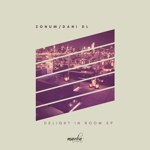 Delight in Room - Single de Zonum