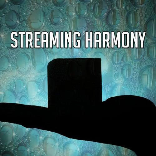 Streaming Harmony de Meditación Música Ambiente