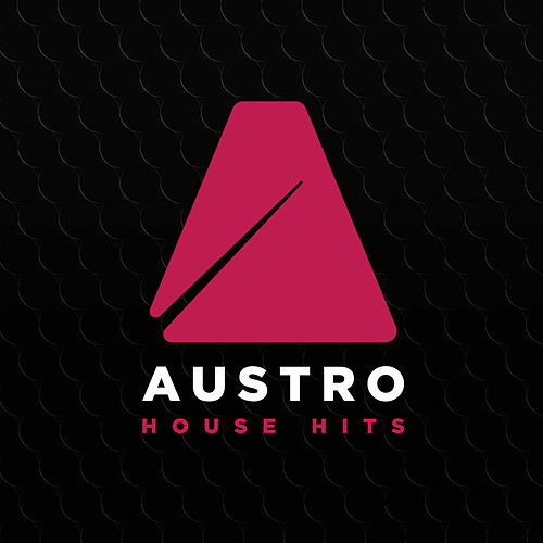 Austro House Hits 2017 de Various Artists