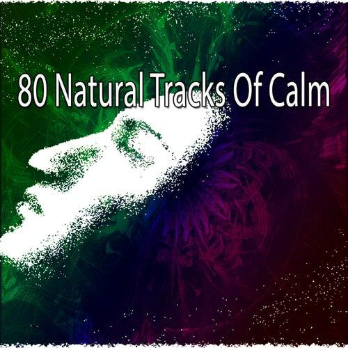 80 Natural Tracks Of Calm de Ocean Sound
