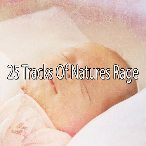 25 Tracks Of Natures Rage de Thunderstorm Sleep