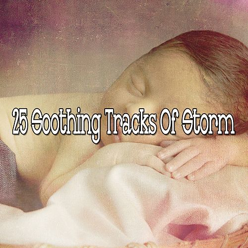 25 Soothing Tracks Of Storm de Thunderstorms