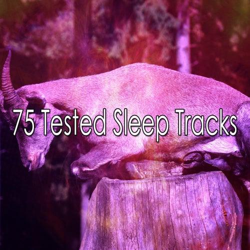 75 Tested Sleep Tracks de Ocean Sound