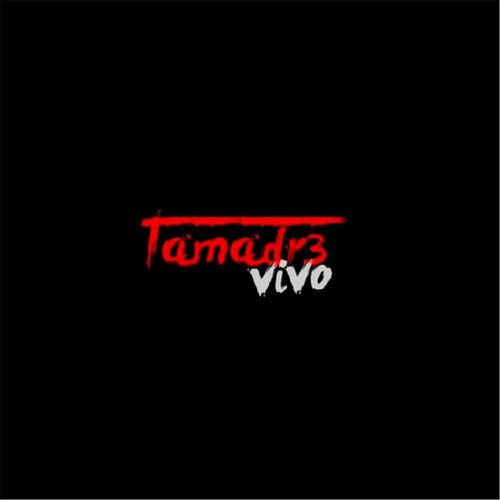 Vivo von Tamadre