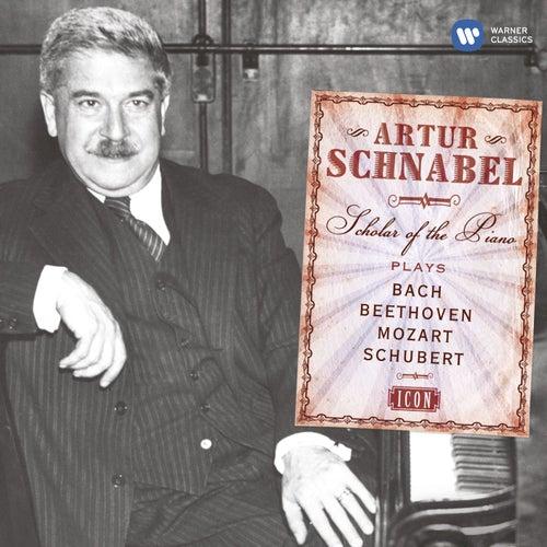 Icon: Artur Schnabel by Artur Schnabel