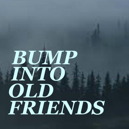 Bump Into An Old Friend de Various Artists