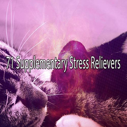 71 Supplementary Stress Relievers von Best Relaxing SPA Music