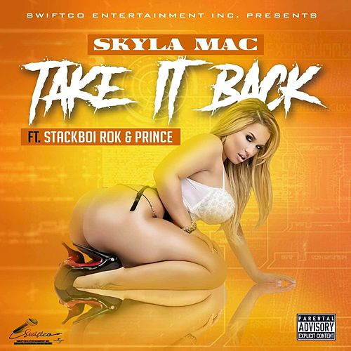 Take It Back de Skyla Mac