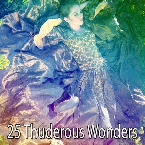25 Thuderous Wonders de Thunderstorm Sleep