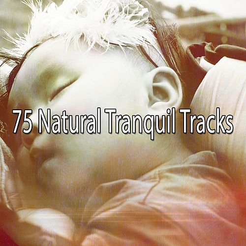 75 Natural Tranquil Tracks von Rockabye Lullaby